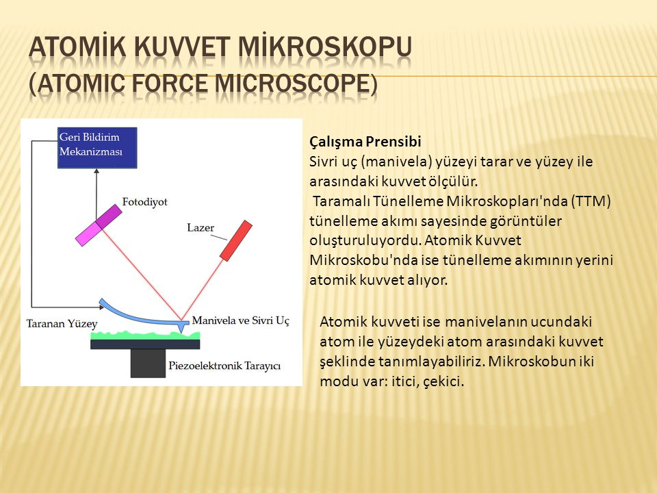 ATOMİK KUVVET MİKROSKOPU (Atomic Force Microscope)
