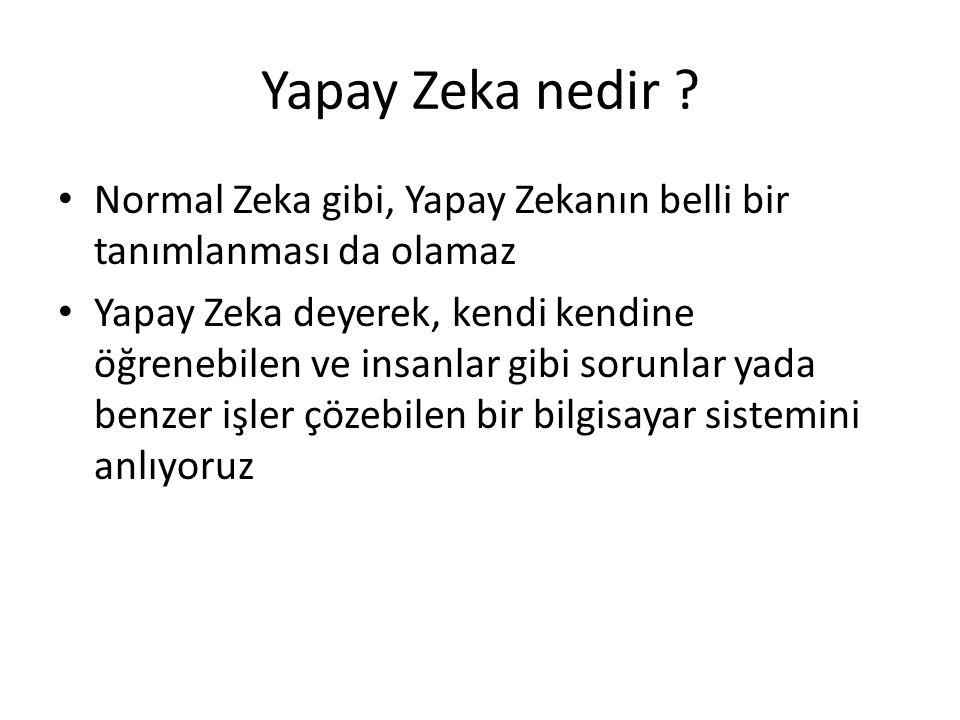Yapay Zeka nedir Normal Zeka gibi, Yapay Zekanın belli bir tanımlanması da olamaz.