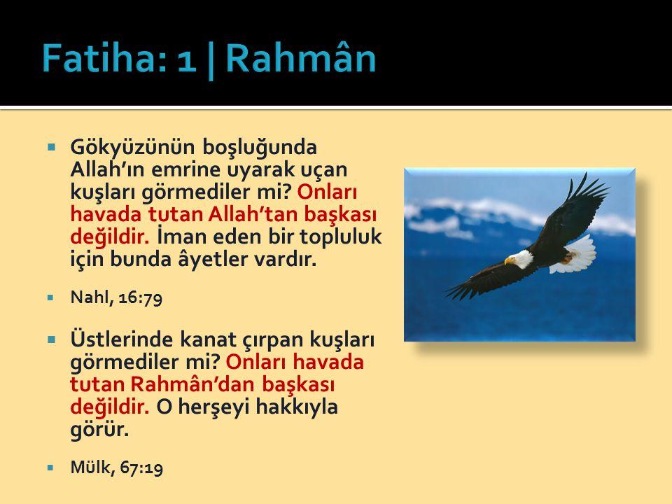 Fatiha: 1 | Rahmân