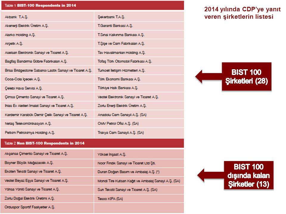 BIST 100 dışında kalan Şirketler (13)