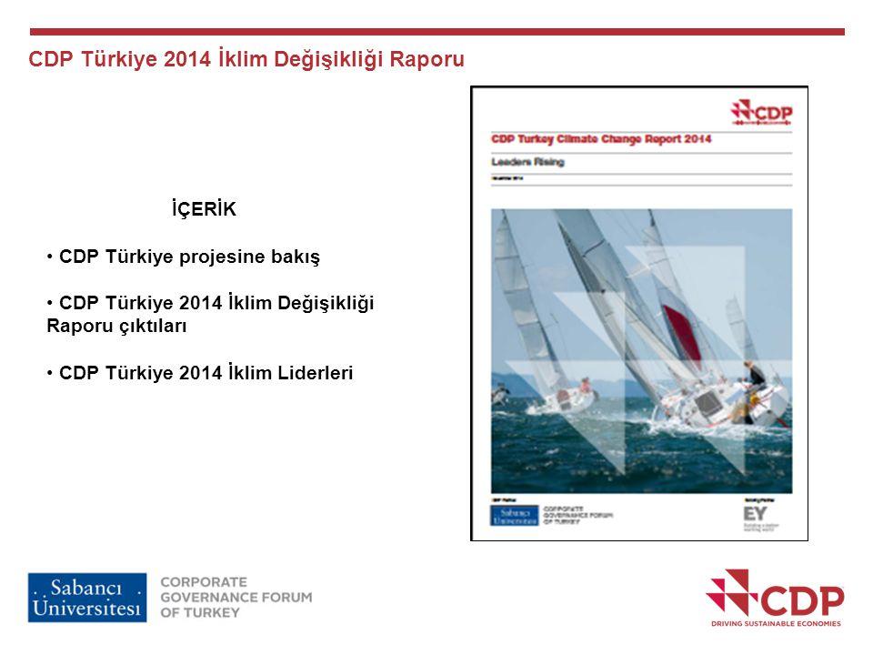 CDP Türkiye 2014 İklim Değişikliği Raporu