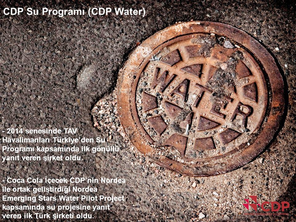 CDP Su Programı (CDP Water)