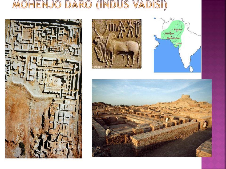Mohenjo Daro (Indus Vadisi)