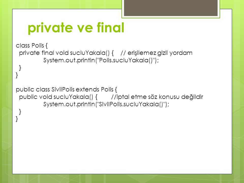 private ve final class Polis {