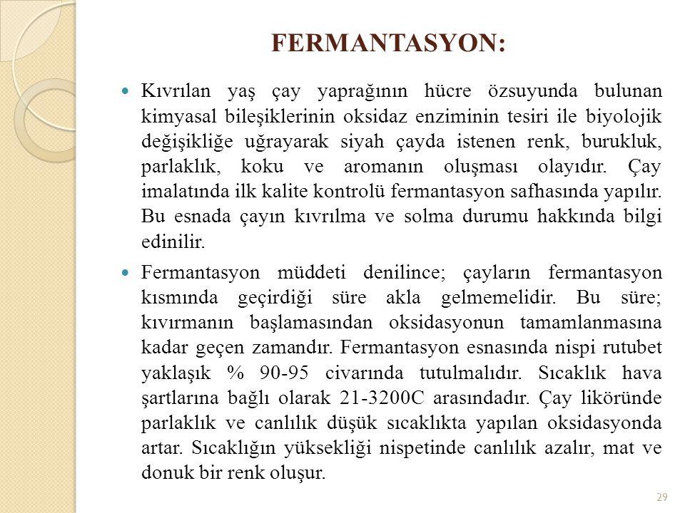 FERMANTASYON:
