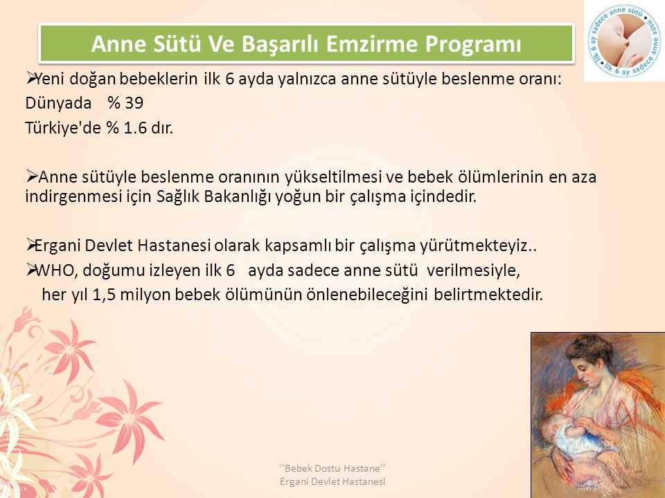 Anne Sütü Ve Başarılı Emzirme Programı