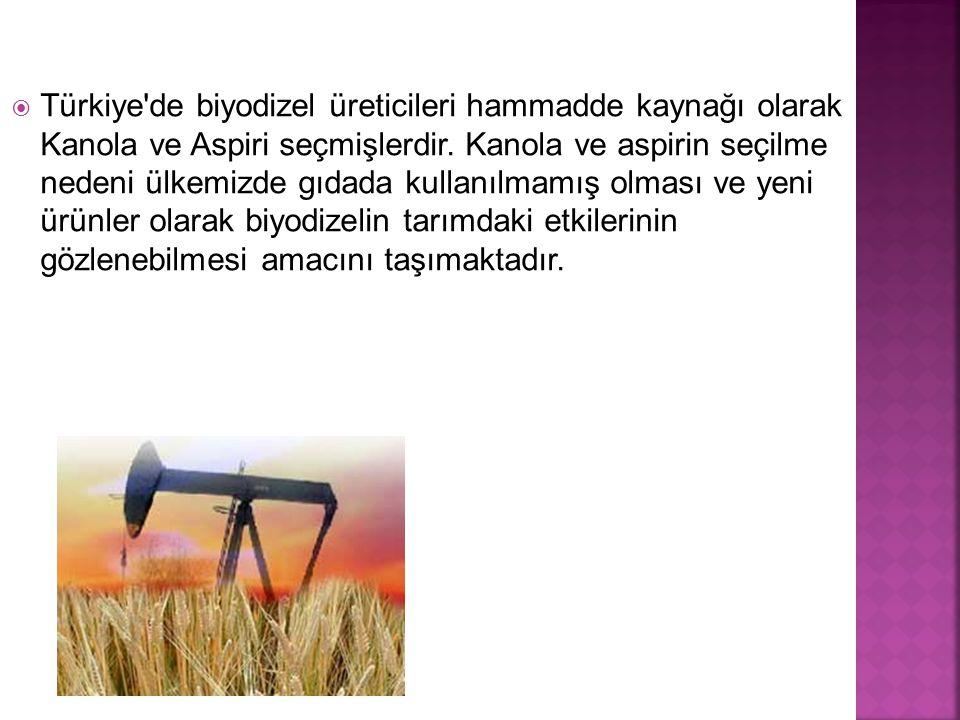 Türkiye de biyodizel üreticileri hammadde kaynağı olarak Kanola ve Aspiri seçmişlerdir.