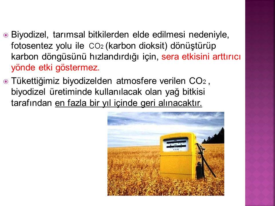 Biyodizel, tarımsal bitkilerden elde edilmesi nedeniyle, fotosentez yolu ile CO2 (karbon dioksit) dönüştürüp karbon döngüsünü hızlandırdığı için, sera etkisini arttırıcı yönde etki göstermez.