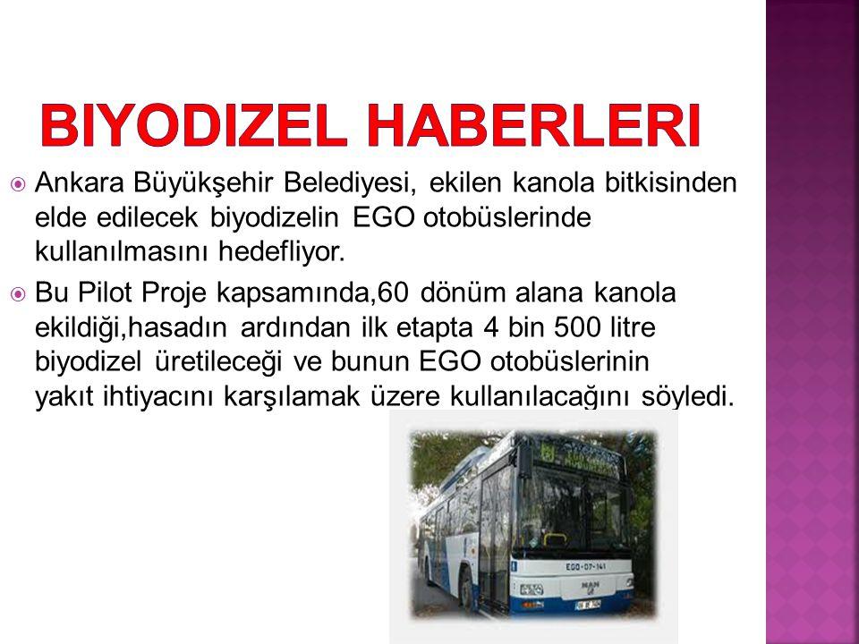 Biyodizel Haberleri Ankara Büyükşehir Belediyesi, ekilen kanola bitkisinden elde edilecek biyodizelin EGO otobüslerinde kullanılmasını hedefliyor.