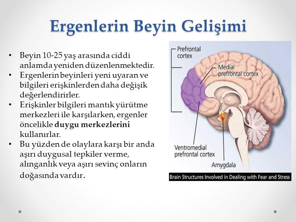 Ergenlerin Beyin Gelişimi