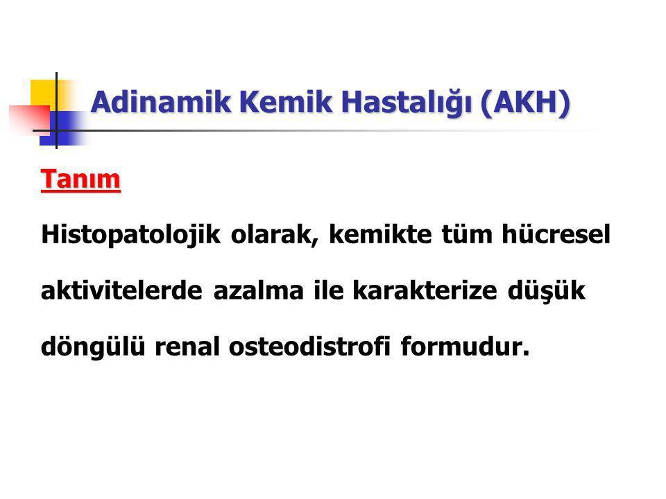 Adinamik Kemik Hastalığı (AKH)