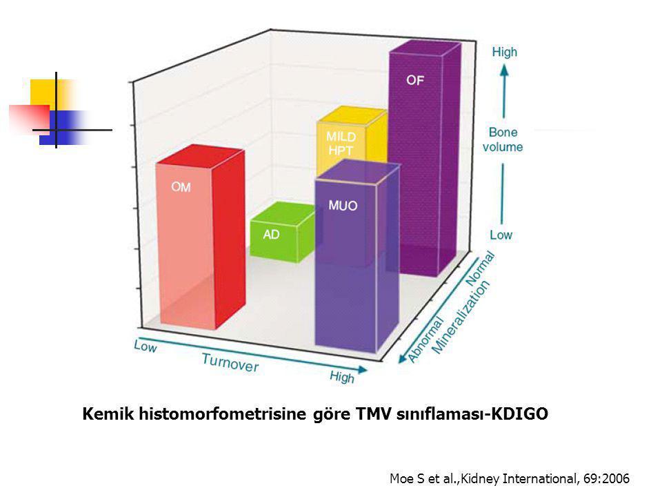Kemik histomorfometrisine göre TMV sınıflaması-KDIGO