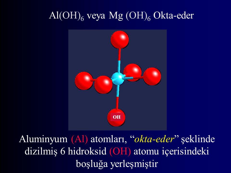 Al(OH)6 veya Mg (OH)6 Okta-eder