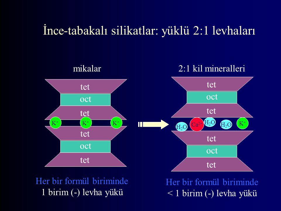 İnce-tabakalı silikatlar: yüklü 2:1 levhaları