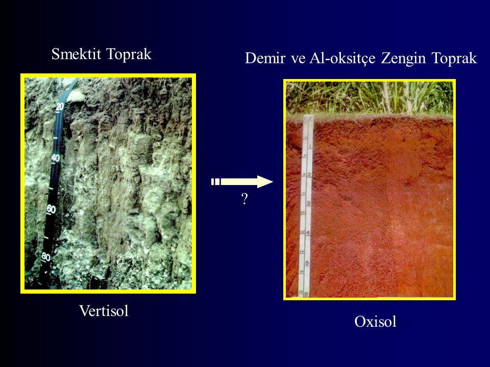 Smektit Toprak Demir ve Al-oksitçe Zengin Toprak Vertisol Oxisol