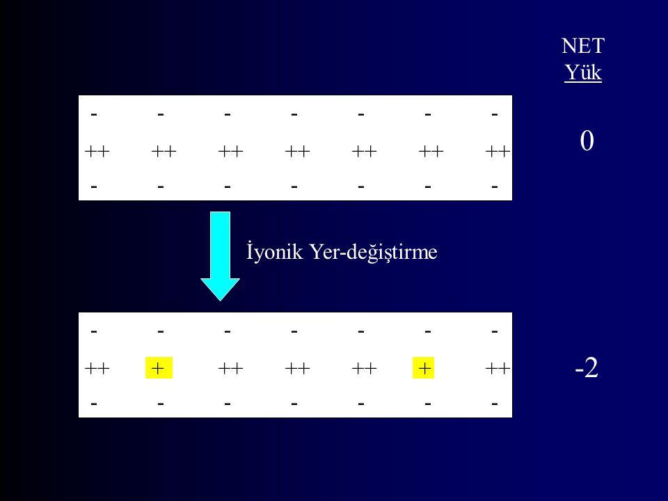 -2 NET Yük - - - - - - - ++ ++ ++ ++ ++ ++ ++ - - - - - - -