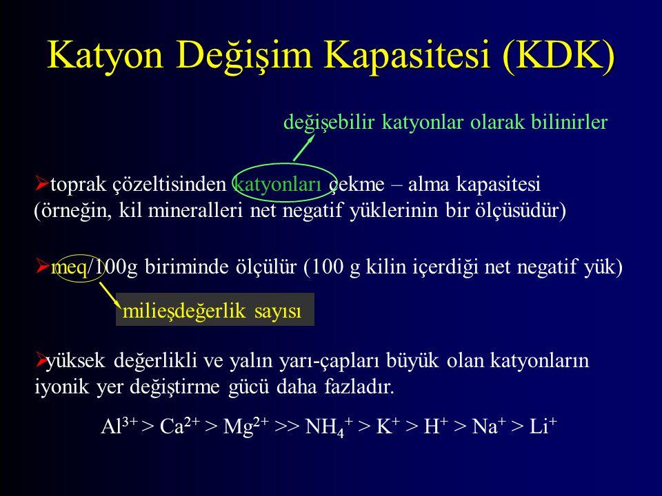 Katyon Değişim Kapasitesi (KDK)