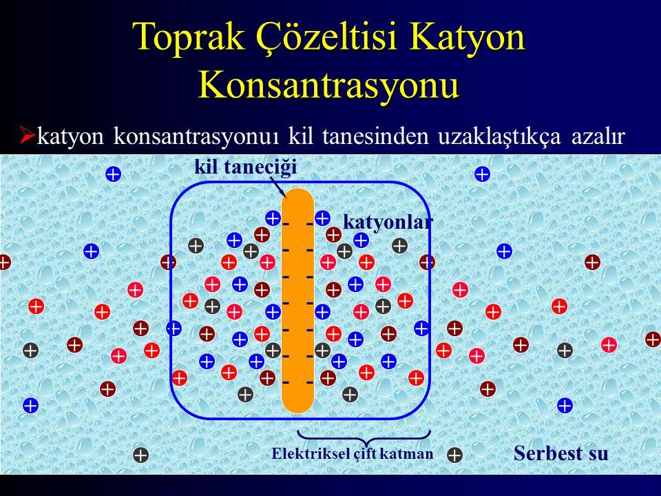 Toprak Çözeltisi Katyon Konsantrasyonu