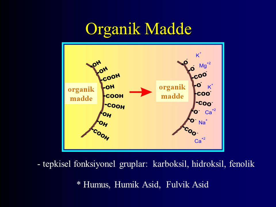 Organik Madde organik madde. - tepkisel fonksiyonel gruplar: karboksil, hidroksil, fenolik.