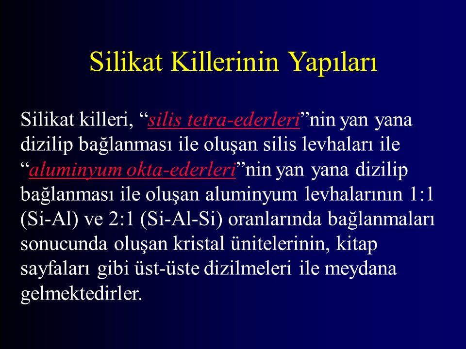 Silikat Killerinin Yapıları