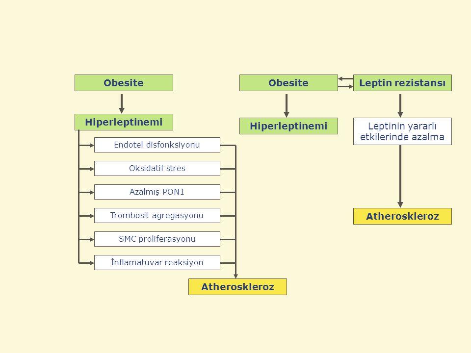Leptinin yararlı etkilerinde azalma