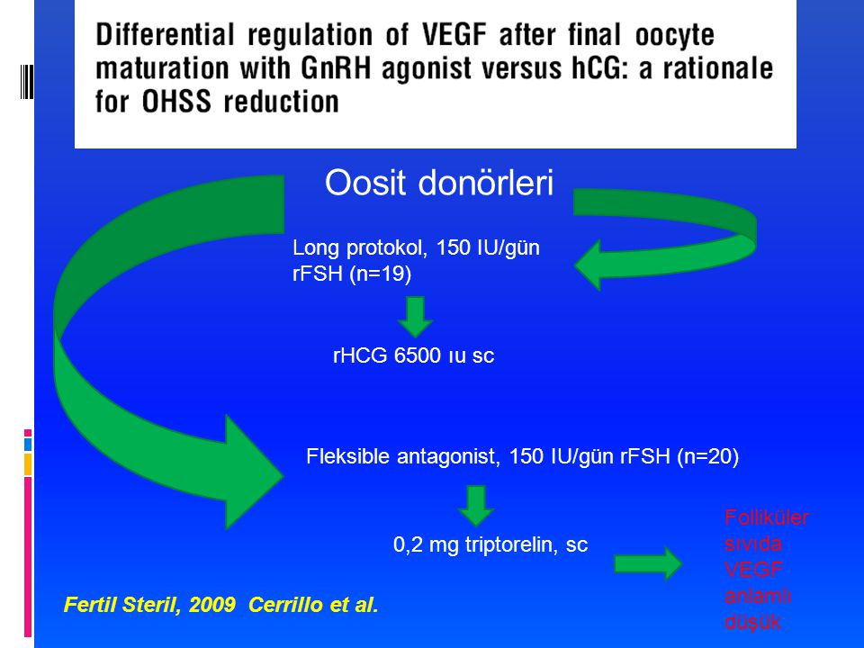 Oosit donörleri Long protokol, 150 IU/gün rFSH (n=19) rHCG 6500 ıu sc