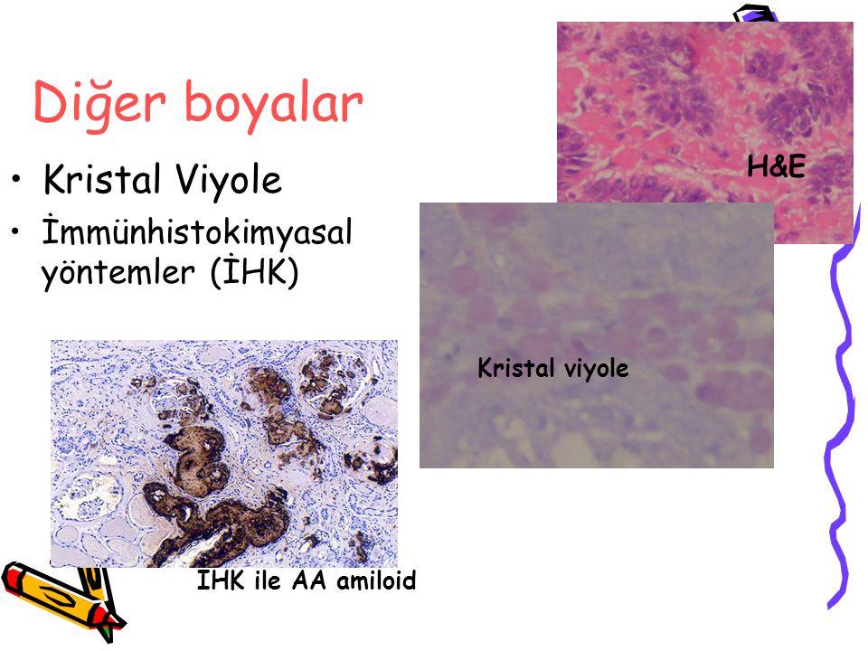 Diğer boyalar Kristal Viyole İmmünhistokimyasal yöntemler (İHK) H&E