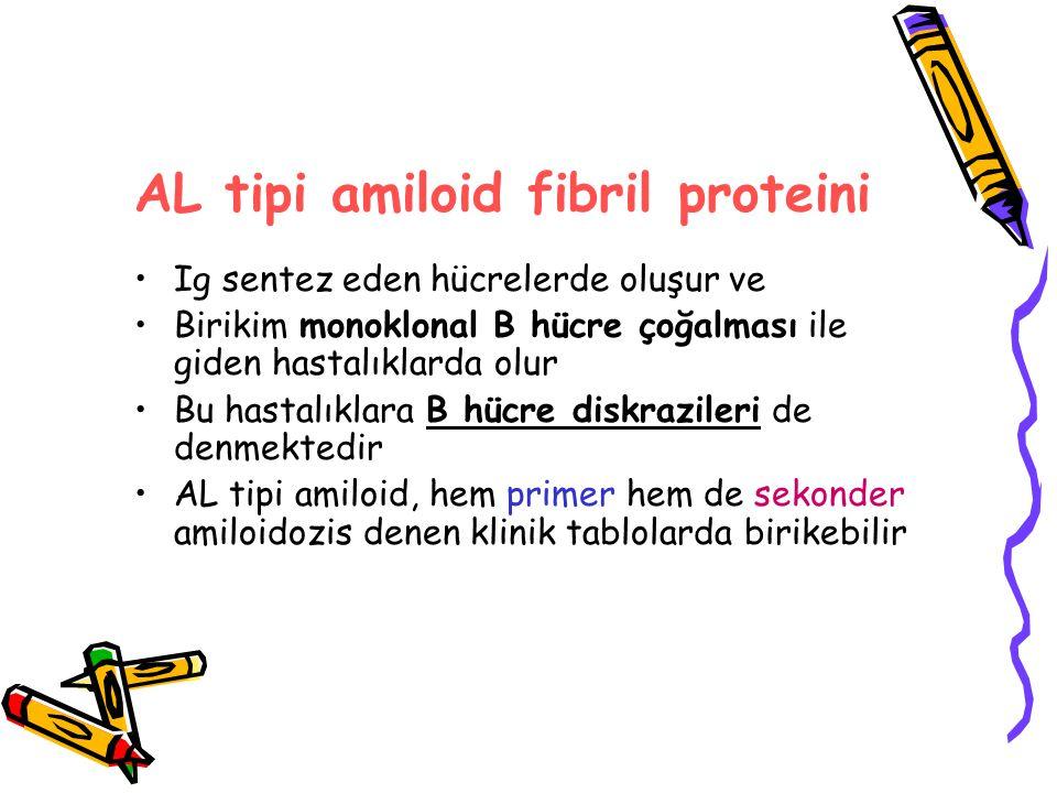AL tipi amiloid fibril proteini