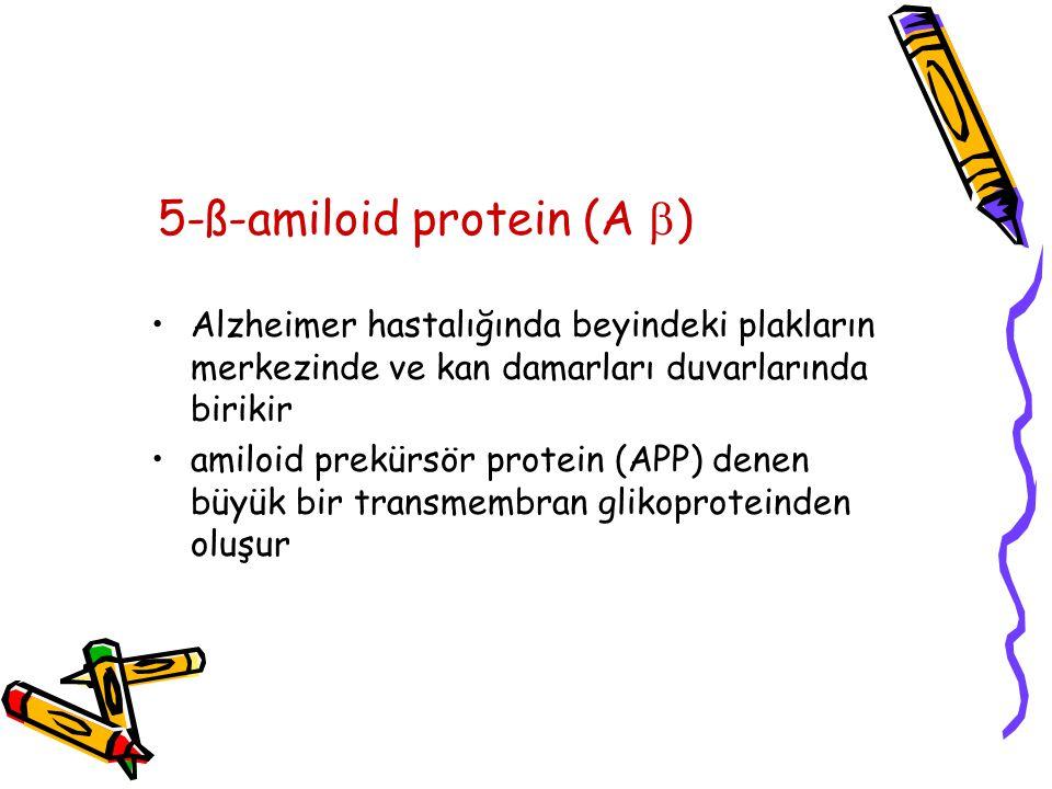 5-ß-amiloid protein (A )