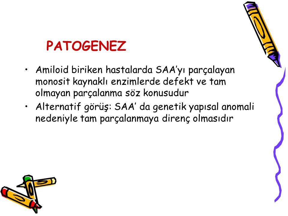 PATOGENEZ Amiloid biriken hastalarda SAA'yı parçalayan monosit kaynaklı enzimlerde defekt ve tam olmayan parçalanma söz konusudur.