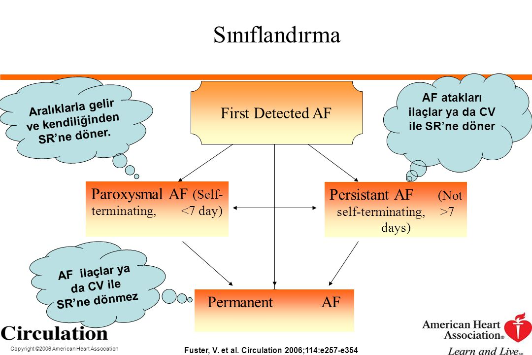 Sınıflandırma First Detected AF