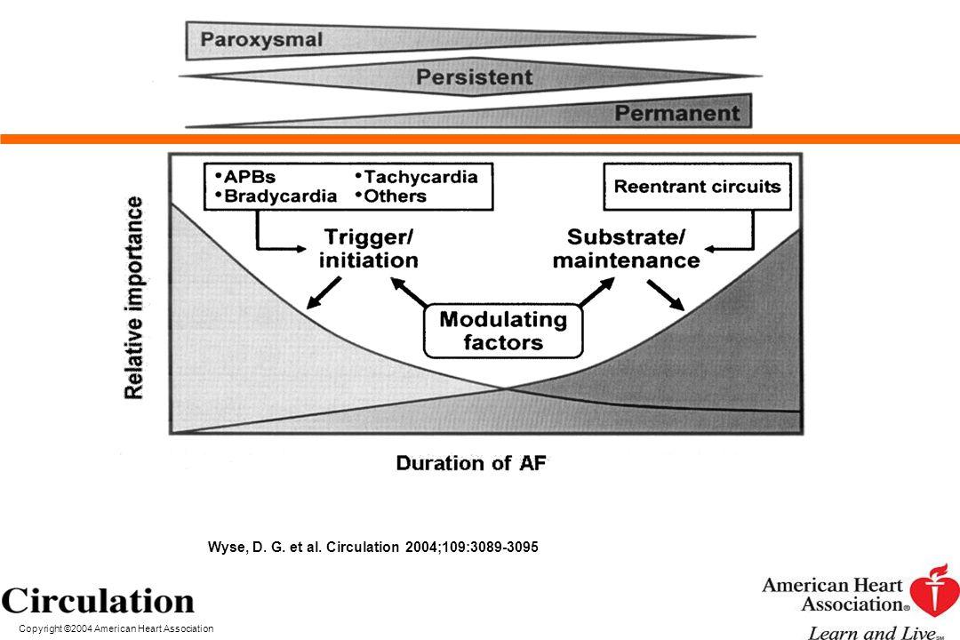 Wyse, D. G. et al. Circulation 2004;109:3089-3095