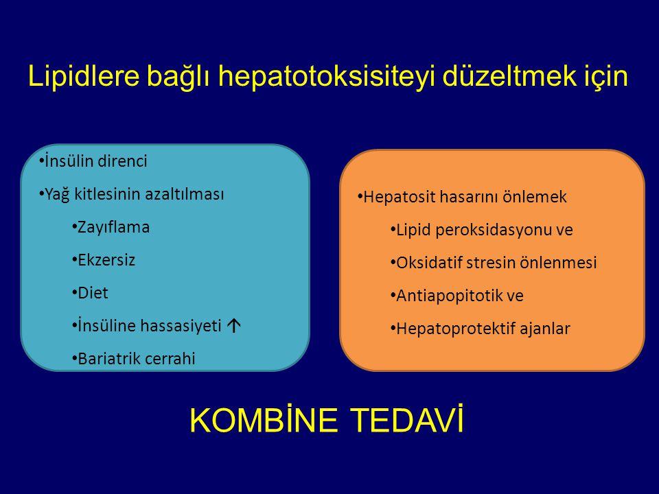 Lipidlere bağlı hepatotoksisiteyi düzeltmek için