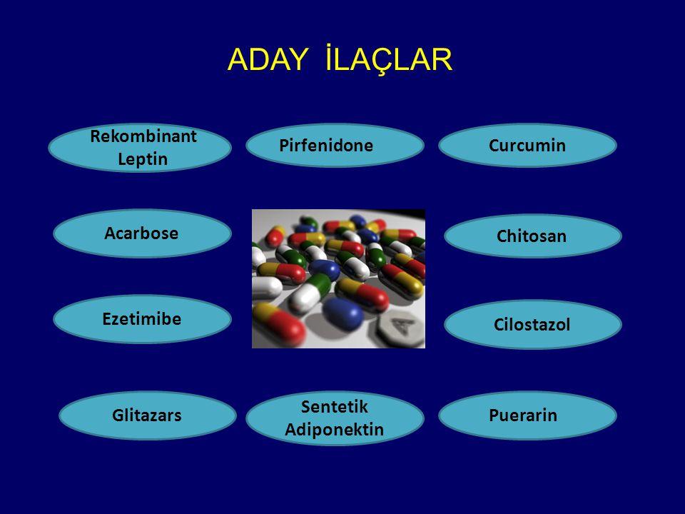 ADAY İLAÇLAR Rekombinant Leptin Pirfenidone Curcumin Acarbose Chitosan