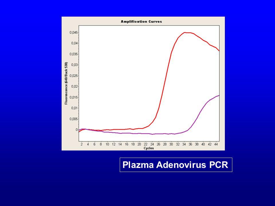 Plazma Adenovirus PCR