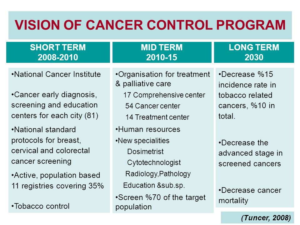 VISION OF CANCER CONTROL PROGRAM