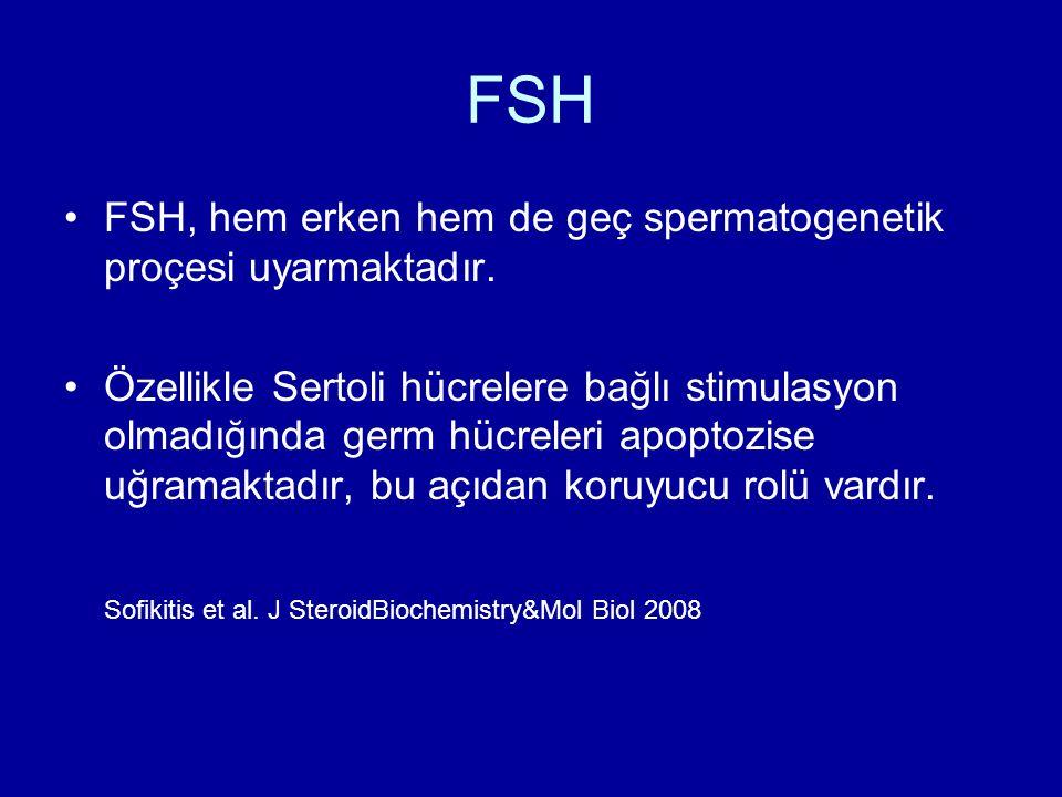 FSH FSH, hem erken hem de geç spermatogenetik proçesi uyarmaktadır.