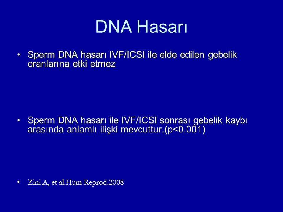DNA Hasarı Sperm DNA hasarı IVF/ICSI ile elde edilen gebelik oranlarına etki etmez.