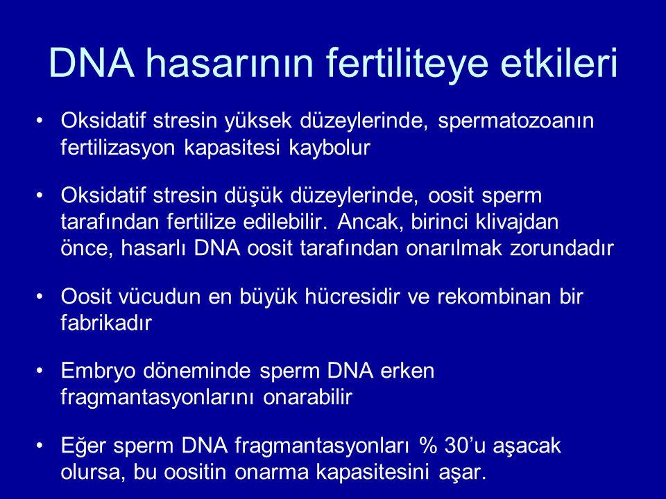 DNA hasarının fertiliteye etkileri
