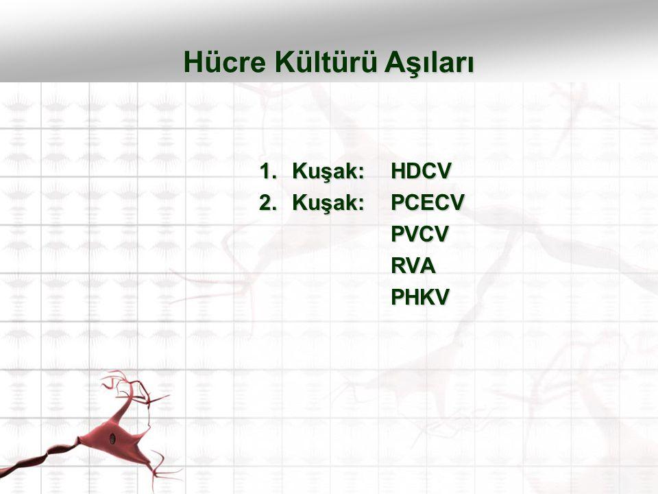 Hücre Kültürü Aşıları Kuşak: HDCV Kuşak: PCECV PVCV RVA PHKV