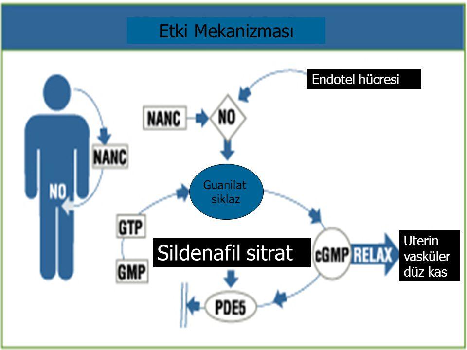 Sildenafil sitrat Etki Mekanizması Endotel hücresi