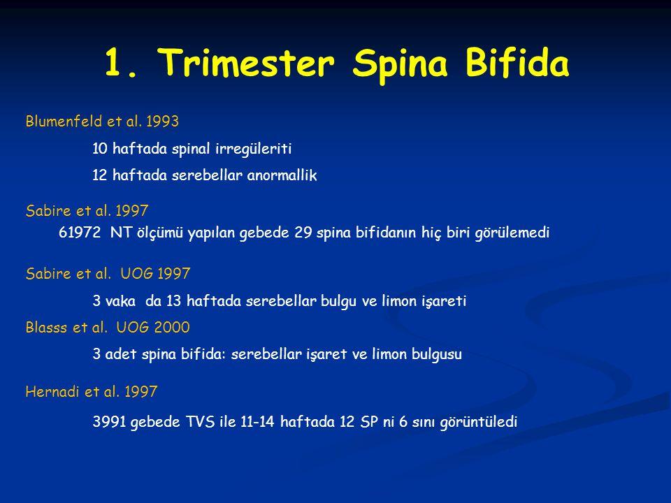 1. Trimester Spina Bifida
