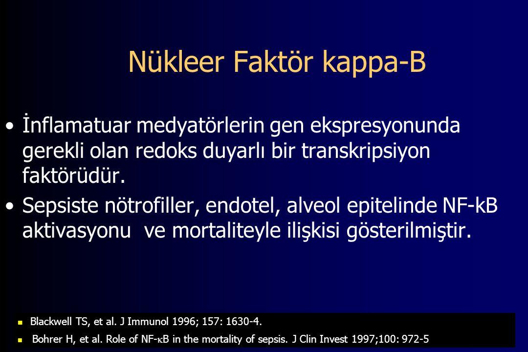 Nükleer Faktör kappa-B