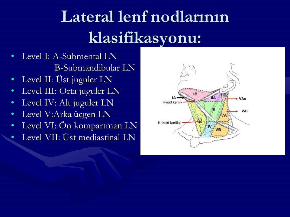 Lateral lenf nodlarının klasifikasyonu: