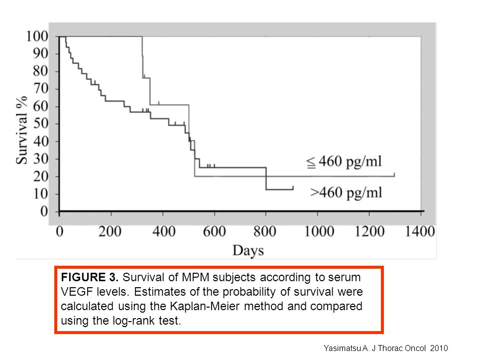 FIGURE 3. Survival of MPM subjects according to serum
