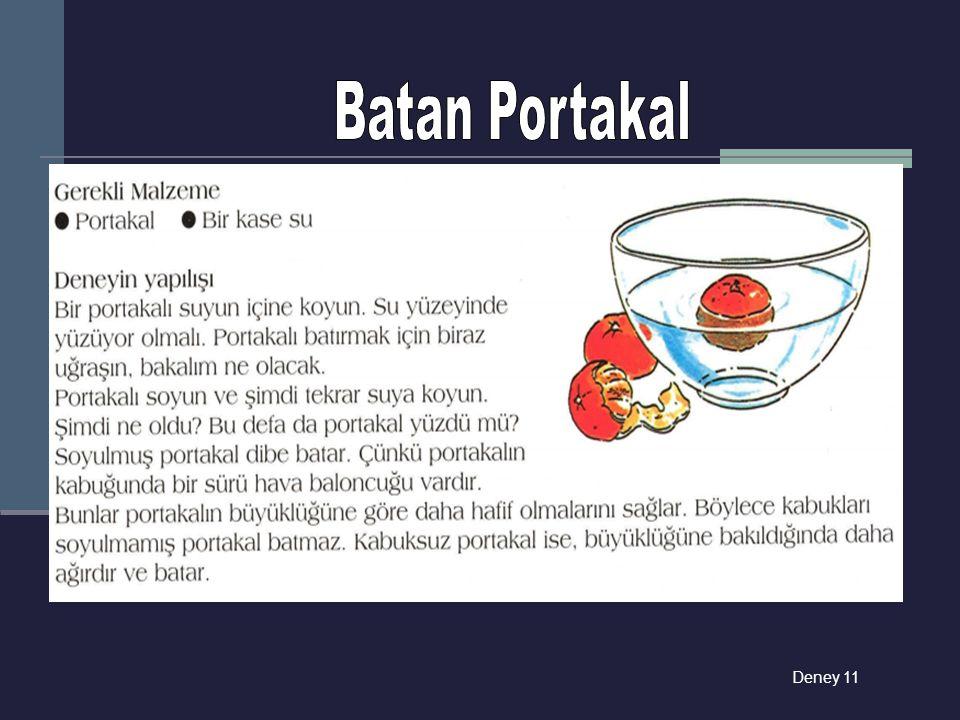 Batan Portakal Deney 11