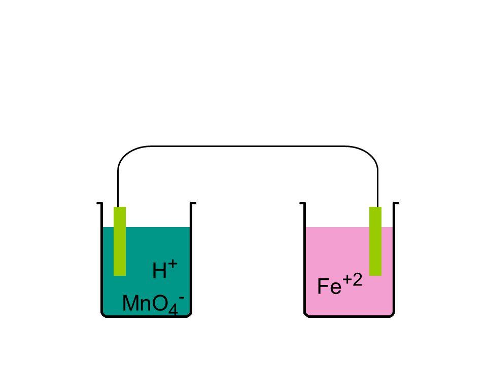 H+ MnO4- Fe+2