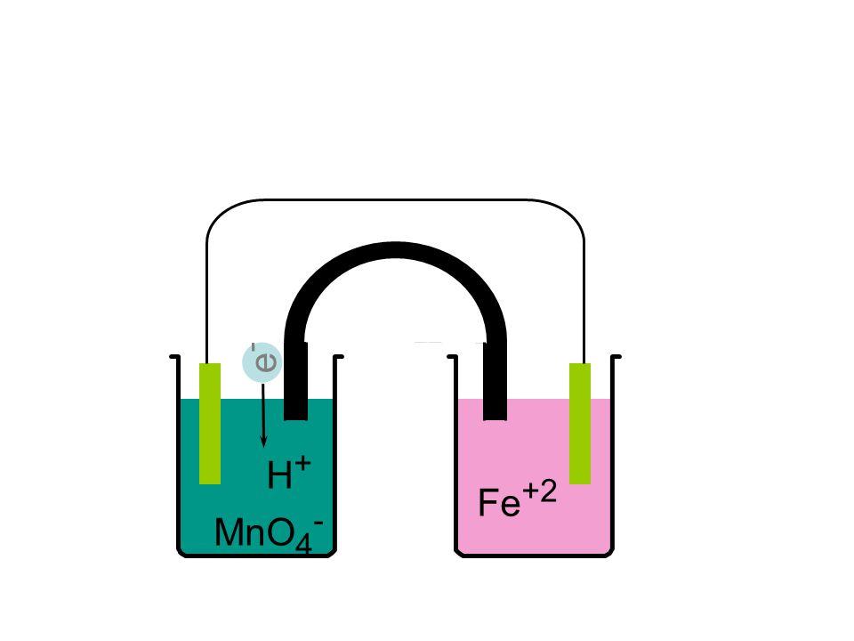 e- H+ MnO4- Fe+2