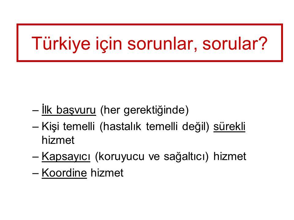 Türkiye için sorunlar, sorular