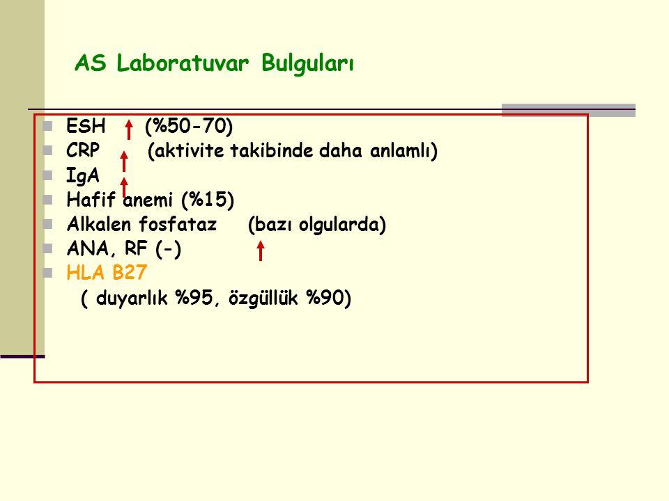 AS Laboratuvar Bulguları
